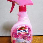 お風呂のお掃除(粗掃除・洗剤塗布)